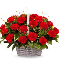 카네이션꽃바구니